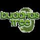 Buddha's Tree (12)