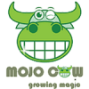 Mojo Cow