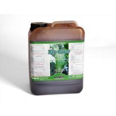 Biobizz Bio Grow 10 litres