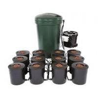 I.W.S DWC 12 pot system