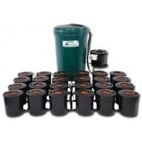 I.W.S DWC 24 pot system