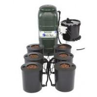 I.W.S DWC 6 pot system