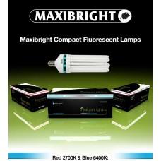 Maxibright Compact Fluorescent Lamp Blue 125W