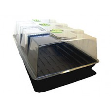 X-Stream Heated Propagator